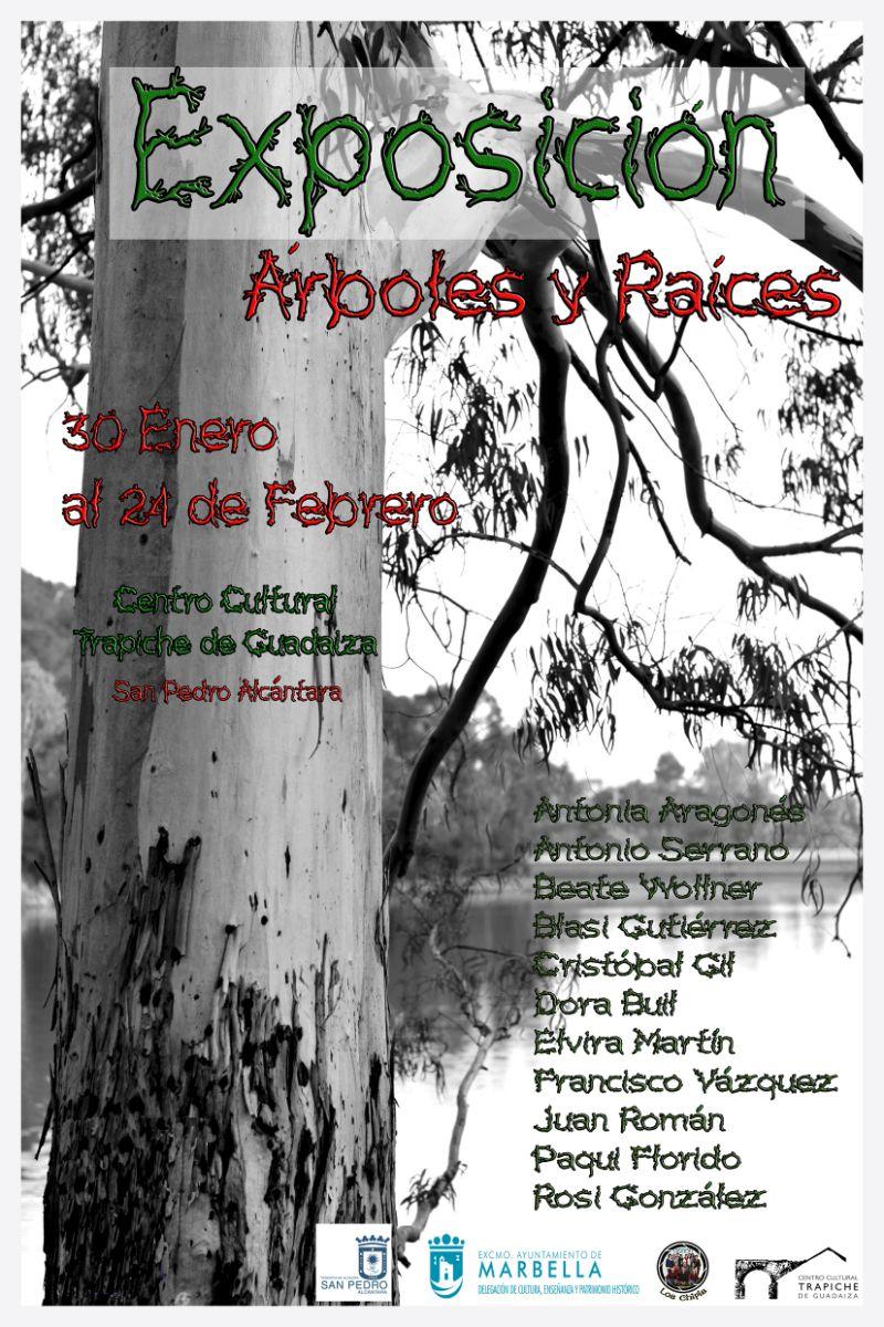 Fotografía en Marbella: Exposición Árboles y Raíces 1